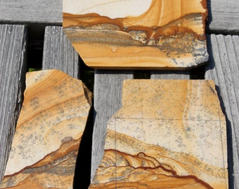 You pick - Owyhee jasper Slabs, beautiful high grade old stock lapidary material with desert scences and landscapes