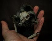 Ruda Abdab - spooky halloween ram skull plushie