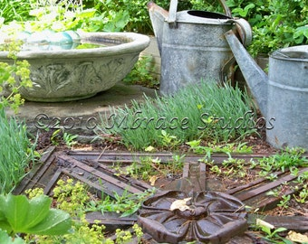 garden ornament photography - watering cans ball floating in bowl - 5x7 matted photo