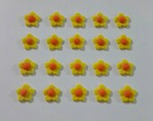 20 Edible Yellow Flowers toppers