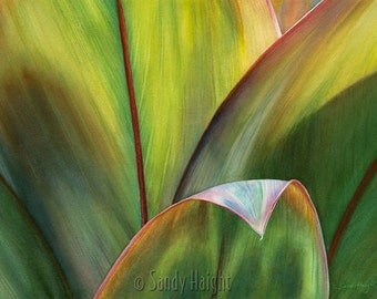 Matted Giclee Print of Original Watercolor Painting, tropical ti leaves, archival,green,macro,abstract,unframed,wall art, home decor, botany
