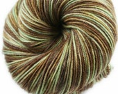 SWISS CHOCOLATE Superwash Merino/Nylon/Tencel Variegated Fingering Weight Yarn