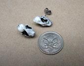 STEAMPUNK small resin bat skull studs