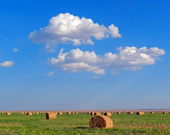 Country Farm Scenery Hay Bales in Huge Field with White Puffy Clouds & Blue Sky Wall Art Home Decor Digital Download Fine Art Photography