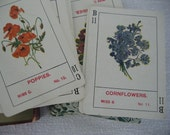 Antique Card Parlor Game of Flowers # 1126 c 1899 The U.S. Playing Card Co. Cincinnati