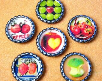 Apples - Bottle Cap Magnet Set of 6