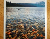 Fallen Leaf Lake Photo Print