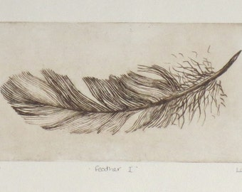Original dry point etching of a feather in sepia artist proof