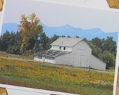 Barn and Goldenrod Photo Note Card - Rural Nature Photography Montana