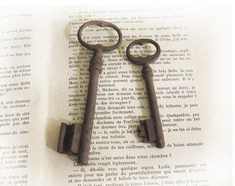set of 2 Antique big french Skeleton Key, antique patina