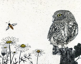 Burrowing Owl in Daisies Art Print of original Scraperboard