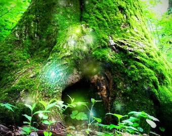 "Photo Print, ""Gnome Home"", enchanted, fairy photography, fantasy photography, fairy art, faerie, fairyland, fairytale, magic, myth, pagan"