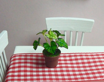 A Potted Caladium Indoor Plant for  Dollhouse 1/12 Scale