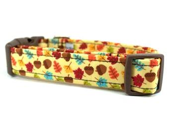 Fall Dog Collar | Autumn Harvest Dog Collar | Girl Dog Collar | Boy Dog Collar | Custom Dog Collar | Dog Collar