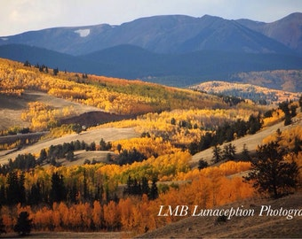 Set of 6 Colorado Landscape Photo Cards