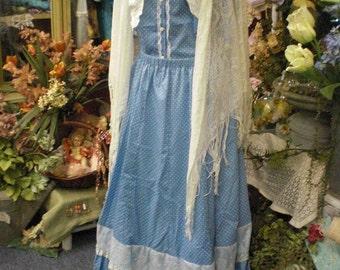 Vintage Blue And White Prairie Dress Costume