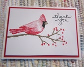 Thank You Cards  Cardnial  Set of 6