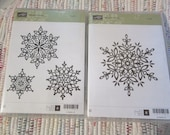 Stampin Up Festive Flurry Stamp Set and Matching Framelits