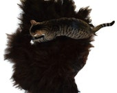 Cat Bed Sheep-friendly Pet Bed Mat Wool Fleece Felted Rug - Navajo Churro Black Brown - Supporting Small Farms of The United States
