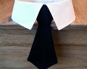 Removable Black Cotton Dog Neck Tie or Bow Tie with or Without Shirt Collar