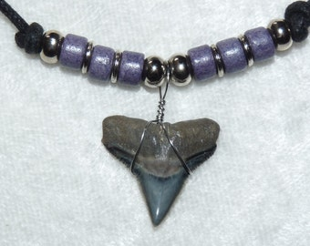 Fossil bull shark tooth necklace with purple beads and adjustable cord  04