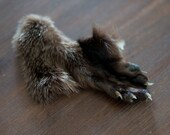 Real River Otter Tanned Paw