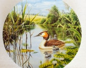 Happy Families Wedgwood Britains Beautiful Birds Collection by Leighton Moses Bone China Wall Plate Display Use Made in England
