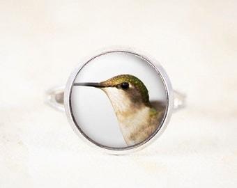 Silver Hummingbird Ring - Female Hummingbird Jewelry, Silver Bird Jewelry, Bird Photo Ring, Humming Bird Ring, Nature Jewelry, Bird Gift