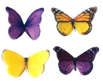 Edible Butterflies SMALL