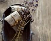 farmhouse decor, rustic home decor, lavender, romantic wall art, botanical art print, fine art photo, floral nusery art, country style