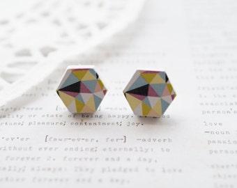 Wooden Pastel Geometric Hexagon Stud Earrings