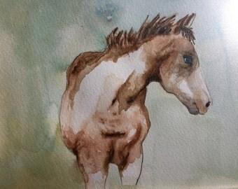 "Original Painting gouache on paper ""Wild Horse"""