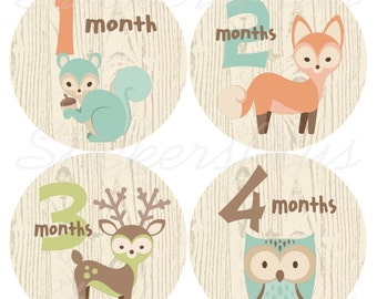 Monthly Baby Stickers Boy Girl Gender Neutral Baby Month One Piece Age Stickers Plus FREE Gift Woodland Animal Fox Deer Owl Squirrel Nursery