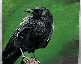 "Raven on 8"" x 10"" canvas board, bird painting, bird art, original art, wildlife art, acrylic art, wall decor, unframed art, office art"