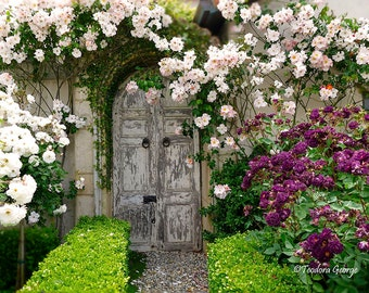 Vintage Door with Roses  Photo Print, Botanical Photography, Flower Photography, Spring, Garden Photography, Roses