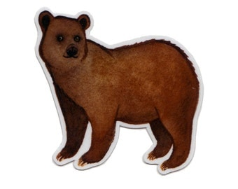 Brown Bear Wildlife Magnet / Nature Art / Refrigerator Magnet / Office Magnet / Party Favor / Small Gift
