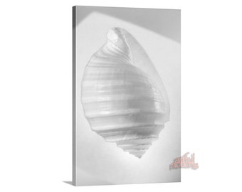 Black and White, Bathroom Art, Canvas Art, Ready to Hang, Seashell Decor, Vertical Art, Sea Shell Art, Bathroom Decor, Seashell Home Decor