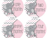 Baby Milestone Growth Stickers Pink and Grey Elephants  Monthly Infant Stickers Baby Nursery Elephant Theme Zoo Baby Photo Props #542P