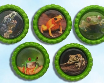 frog magnet set, refrigerator magnets,  green bottle caps, tree frog collectable, birthday party favor, I love frogs, pictures of frogs