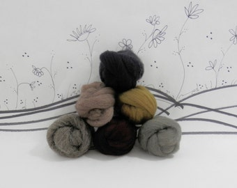 Wooly Buns wool roving assortment, 6 piece fiber assortment, needle felting supplies in Cats and Dogs, 1.5 oz graduated brown shades,