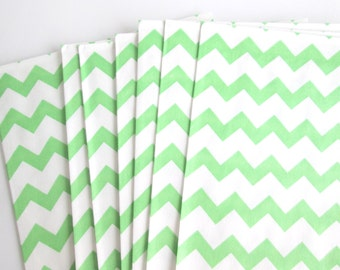 20 Green and White goodie bags party favor bags treat bags paper bags party supply
