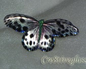 Unique silver and Black sparkling iridescent resin butterfly