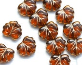 10pc Topaz Leaf Beads, Maple leaves, Czech Glass pressed beads, Golden inlays - 11x13mm - 2488