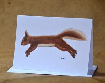 Red Squirrel - Greeting Card - Woodland Animal Card