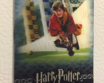 harry potter fridge magnet - quidditch harry