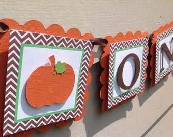 Fall Little Pumpkin Birthday High Chair Banner ONE Photo Prop Banner
