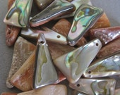 Abalone Triangle Beads Nuggets Polished Drilled LOT of 24 Jewelry Making Projects Beach Wedding DIY Mermaid Jewelry Vintage Rare Shape