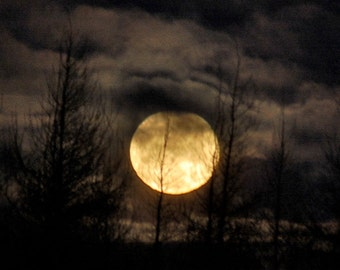 Great Spirit Moon, full moon photograph, moonset, tree silhouette, night sky, golden moon, night sky clouds, Lunar image