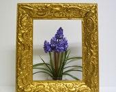 """Frame On Sale / Vintage Ornate Gold Wood Frame...8""""x10"""""""