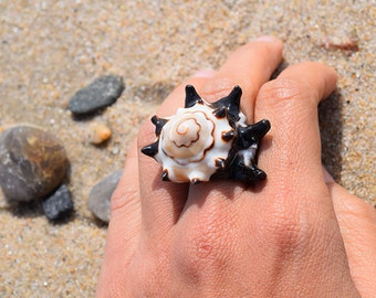 Dark Brown Cream and White Baby Conch Shell Ring 7